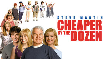 Is Cheaper By The Dozen 2003 On Netflix France