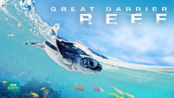 Great Barrier Reef: Great Barrier Reef